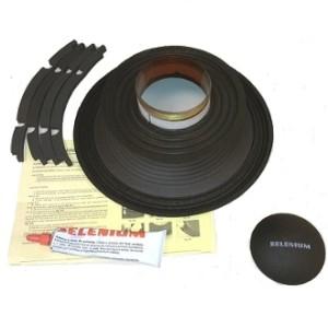 Selenium RCK 12WS600 from Audio Links International